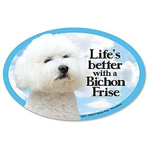 com: Prismatix Decal Cat and Dog Magnets, Bichon Frise: Home & Kitchen