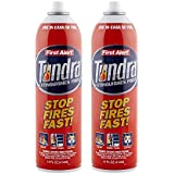 First Alert Fire Extinguisher | Kitchen Value Pack, Tundra Fire Extinguishing Aerosol Spray, Pack of 2, AF400-2