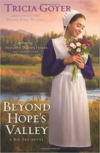 Image result for beyond hope's valley tricia goyer