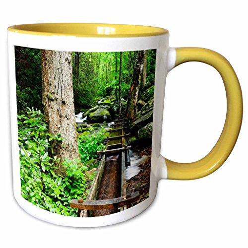 3dRose Danita Delimont - Mills - Tub Mill, Great Smoky Mountains, Tennessee, USA - US43 BJY0011 - Jaynes Gallery - 11oz Two-Tone Yellow Mug (mug_146559_8) Tennessee Beverage Tub