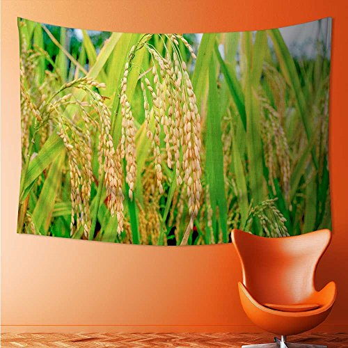 L-QN Decor Tapestry Wall Hanging by The late summer harvest of rice Home Decoration Wall Tapestry Hanging 72W x 54L Inch
