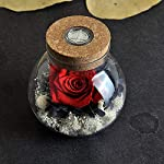 AESTHING-Handmade-Preserved-Real-Rose-Present-with-Gorgeous-Led-Mood-Light-Upscale-Gift-of-Exquisite-Eternal-Flower-for-Birthday-Anniversary-Valentines-Day-Christmas-Thanksgiving-Day-Yellow