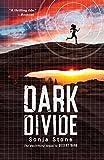Dark Divide (A Desert Dark Novel)