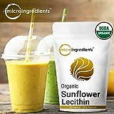 Micro Ingredients Organic Sunflower Lecithin Powder