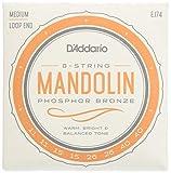 Mandolin Strings - Best Reviews Guide