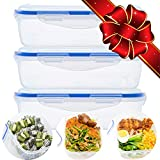 plastic box with snap lid - 3 Pcs Food Storage Plastic Containers with Snap Locking Lid