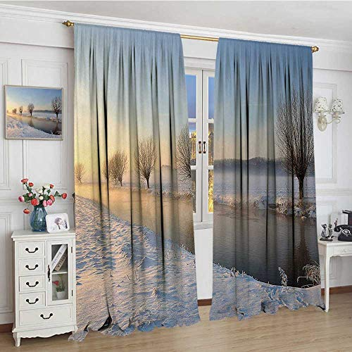 "youpinnong Winter Patterned Drape for Glass Door Snowy River Landscape Barren and Frosted Trees Dutch Netherlands Europe Photograph Decor Curtains by 108""x108"" Multicolor"