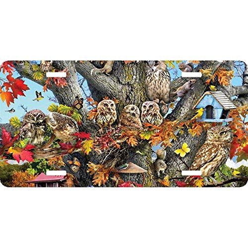 Family Reunion Humor - Fall Reunion Owl Family Aluminum License Plate Frame Humor Tag Holder 2 Hole and Screws Size 12 x 6 Inch