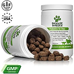 Doggie Dailies Probiotics Dogs: 225 Soft Chews, Advanced Dog Probiotics Prebiotics, Relieves Dog Diarrhea, Improves Digestion, Optimizes Immune System & Enhances Overall Health, Made in USA