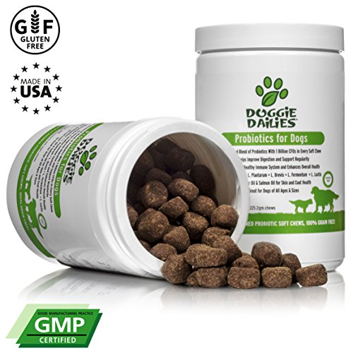 Doggie Dailies Probiotics Dogs: 225 Soft Chews, Advanced Dog Probiotics Prebiotics, Relieves Dog Diarrhea, Improves Digestion, Optimizes Immune System & Enhances Overall Health, Made in USA by Doggie Dailies