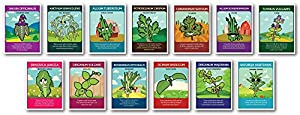 zziggysgal Culinary Herb Seeds (13 pack) – Includes Rosemary, Parsley, Thyme, Cilantro, Sweet Basil, Dill Bouquet, Oregano, Sweet Marjoram, Chives, Savory, Garlic Chives, Mustard, and Sage