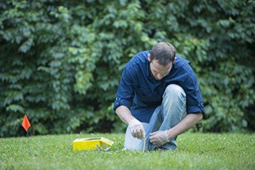 - HealthandOutdoors Tomcat Mole Killer 10-Pack Worm Formula BL34300 048745343006