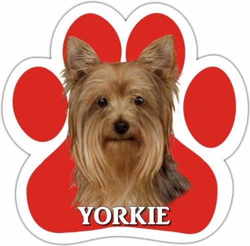 Yorkie Car Magnet With Unique Paw Shaped Design Measures 5.2 by 5.2 Inches Covered In UV Gloss For Weather Protection ()