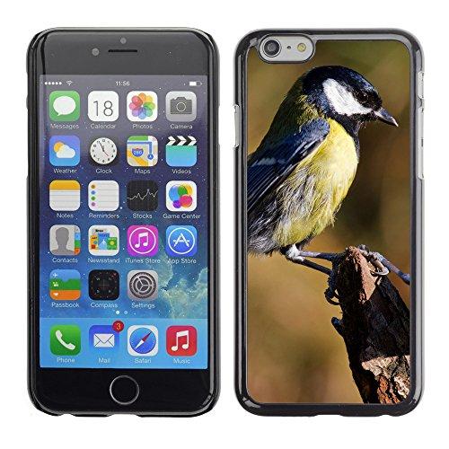 "Premio Sottile Slim Cassa Custodia Case Cover Shell // F00008252 oiseau // Apple iPhone 6 6S 6G 4.7"""