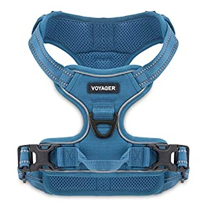Best Pet Supplies Voyager Dual Attachment Outdoor Dog Harness by Best Pet Supplies | NO-Pull Pet Walking Vest Harness