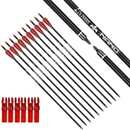 Carbon Arrow Hunting Arrows with 100 Grain Removable Tips for Archery Compound & Recurve & Traditional