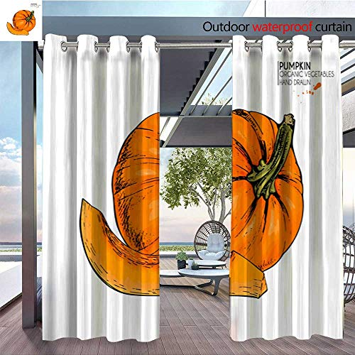 QianHe Balcony Curtains Vector-Hand-Drawn-Set-of-Farm-Vegetables-Isolated-Pumpkin-Engraved-Colored-Art-Organic-Sketched-Vegetarian-Objects-Use-for-Restaurant-menu-Grocery-Market-Store-Party-Hallo ()