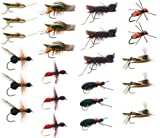 Terrestrial Trout Fly Fishing Flies Collection: 23 Flies + Fly Box