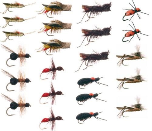 Terrestrial Trout Fly Fishing Flies Collection: 23 Flies + Fly Box, Outdoor Stuffs