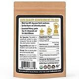 Reishi Mushroom Extract Powder by Real Mushrooms - Certified Organic - Ganoderma Lucidum / Ling Zhi - Immune Booster - 30g Bulk Reishi Mushroom Powder - Perfect for Shakes, Smoothies, Coffee and Tea