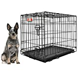 Cheap Animal Planet Collapsible Metal Pet Crate with Removable Tray, Large