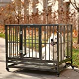 SUNCOO Dog Crate Double Door Folding Metal Divider Animal Panel with Handle Wire Dog Cage, Leak-Proof Dog Tray (36''Pet Kennel)
