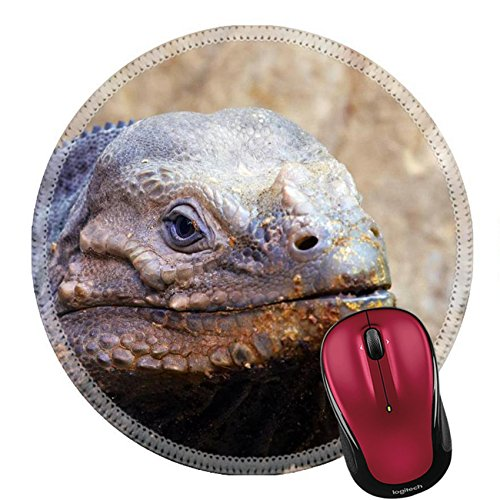 Liili Round Mouse Pad Natural Rubber Mousepad Closeup Of A Lizard Photo 511809