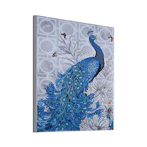 DIY 5D Diamond Painting,Peacock Special Shaped Partial Drill Rhinestone Cross Stitch Home Décor Toponly