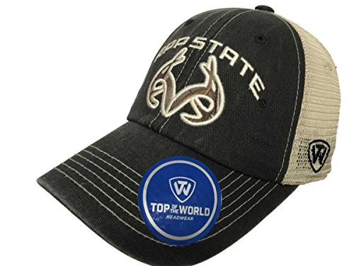 Top of the World Appalachian State Mountaineers TOW Black Realtree Camo Roughage Mesh Adj Hat Cap