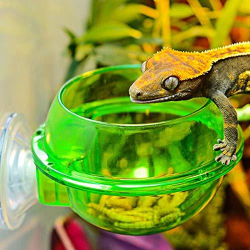 TOOGOO Alimentador De Mascotas en Casa Suministros De Reptiles Alimentador De Ventosa Alimentadores De Bebida Agua De Ventosa Suministros De Lagarto Camale/ón Mascota
