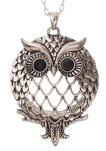 (Owl Magnifier Magnifying Glass Sliding Top Magnet Pendant Necklace, 30