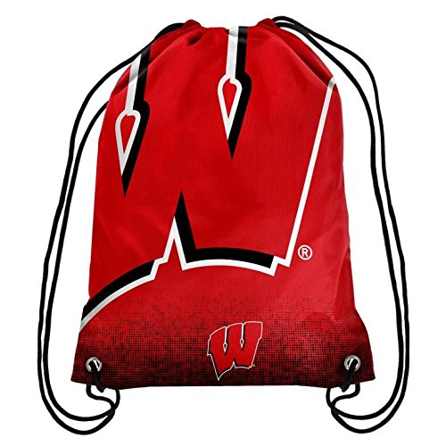 2016 NCAA College Team Logo Drawstring Backpack Bag - Pick Team (Wisconsin Badgers)