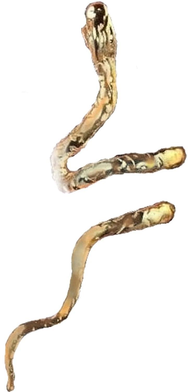 'Gnarley' Snake Ear Cuff Non-Pierced Cartilage Wrap Unisex Earrings A Single Left