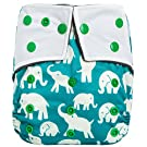 "HappyEndingsTM ""Night, Night"" Charcoal Bamboo Pocket Cloth Diaper + 5 Layer Charcoal Bamboo Insert ""Elephants"""