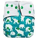 "HappyEndingsTM ""Night, Night"" Charcoal Bamboo Pocket Cloth Diaper + 5 Layer Charcoal Bamboo Insert ""Elephants"""