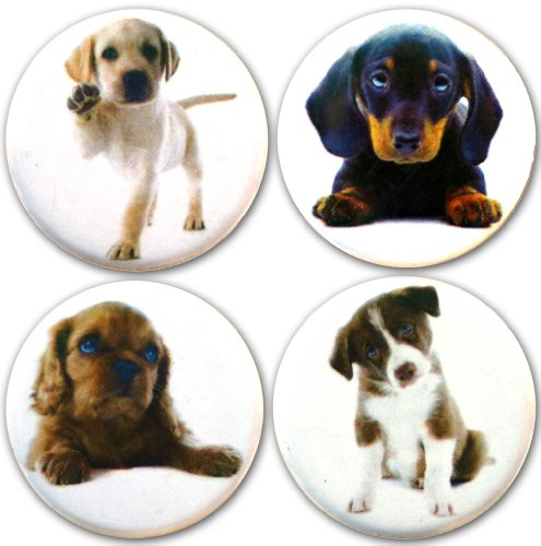 Buttonsmith Puppies 1 25 Refrigerator Magnet
