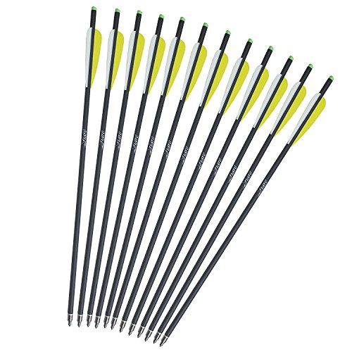 20-Inch Carbon Crossbow Bolt Crossbolt Arrows Fletched 4 Inch Vane with Field Point- Misayar (Pack of 6/12/24)