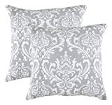 Decorative Pillow Cover - TreeWool, Cotton Canvas Damask Accent Decorative Throw Pillow Covers (2 Cushion Covers; 20 x 20 Inches; Silver Grey & White)
