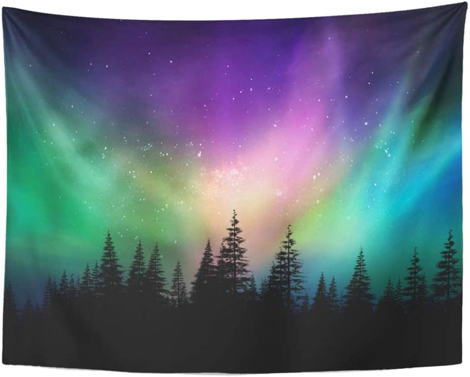 """Emvency Tapestry Wall Hanging Colorful Canada Multicolored Northern Lights Aurora Borealis on Canadian Forest 60"""" x 80"""" Home Decor Art Tapestries for Bedroom Living Room Dorm Apartment"""