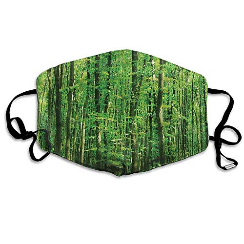 Forest Dust Mouth Mask Tall Birches Relaxing Nature for Men and Women W4
