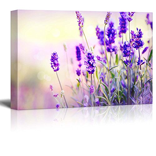 Lavender Field Wall Decor