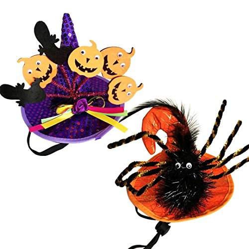 oxe Pet Dog and cat Costumes for Holiday Parties Like Halloween, Christmas and Easter (Orange Spider+Purple Pumpkin) -