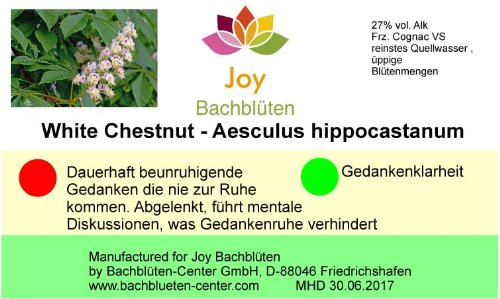 Bachblüten White Chestnut, 20 ml Stockbottle: Amazon.de: Drogerie ...