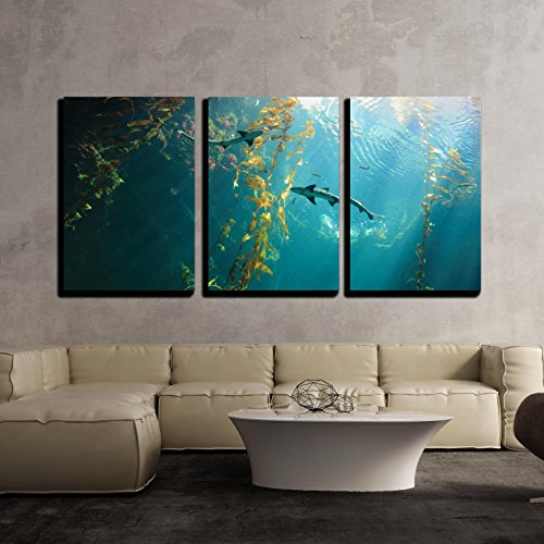 wall26 - 3 Piece Canvas Wall Art - Small Shark in the Ocean with Amazing Light Ray - Modern Home Decor Stretched and Framed Ready to Hang - 16