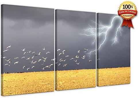LaboratorioRadice Cuadros Modernos sobre Tela 59 x 90 cm (Dim ...