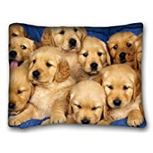 "Decorative Standard Pillow Case Animals Cute Golden Retriever Puppies 20""*26"" One Side"