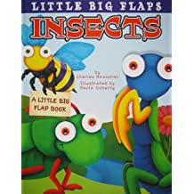 Insects: A Little Big Flap Book