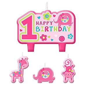 One wild girl 1st birthday party molded cake for 1st birthday decoration packs