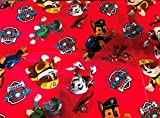 Weighted blanket,boy Paw Patrol,ready to ship, 5 lbs,child weighted washable blanket