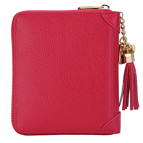 SafeCard 40 Card Solts Women's Credit Card Case Wallet 2 ID Window and Zipper Card Holder (40 Card Rose red) (Card Holder Heart Credit)